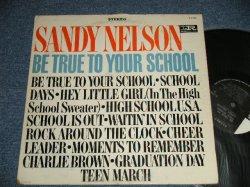 """画像1: SANDY NELSON - BE TRUE TO YOUR SCHOOL (Ex+/Ex++)   / 1964 US AMERICA ORIGINAL 1st Press """"BLACK with PINK and WHITE Label"""" STEREO Used  LP"""