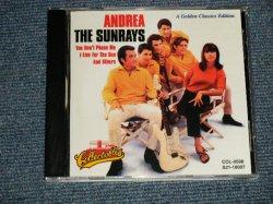 """画像1: THE SUNRAYS - ANDREA (NEW) / 1995 US AMERICA ORIGINAL """"Brand New"""" CD"""