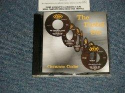 画像1: The PASTEL SIX - CINNAMON CINDER (MINT-/MINT) / 1998 US AMERICA ORIGINAL Used CD