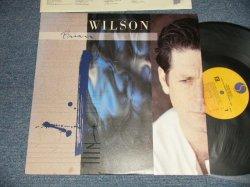 画像1: BRIAN WILSON of THE BEACH BOYS - BRIAN WILSON (MINT-/MINT-) / 1988 US AMERICA ORIGINAL Used LP